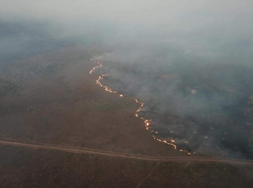 Globo Rural: Grupo de WhatsApp contratou motoqueiros para incendiar floresta