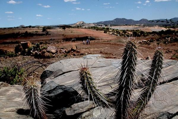 Governo decreta situação de emergência pela seca em 135 cidades do RN